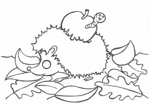 Ježek omalovánky