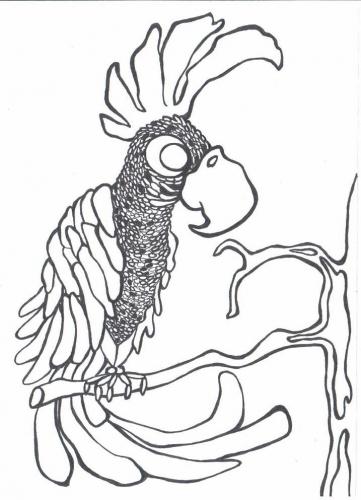 Papoušek omalovánky
