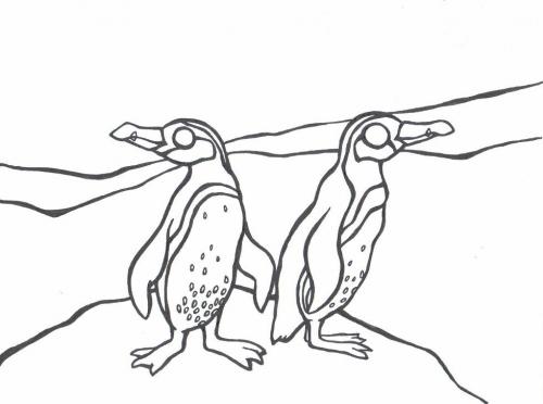 Tučňáci omalovánky