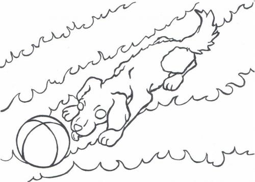 Pejsek omalovánky