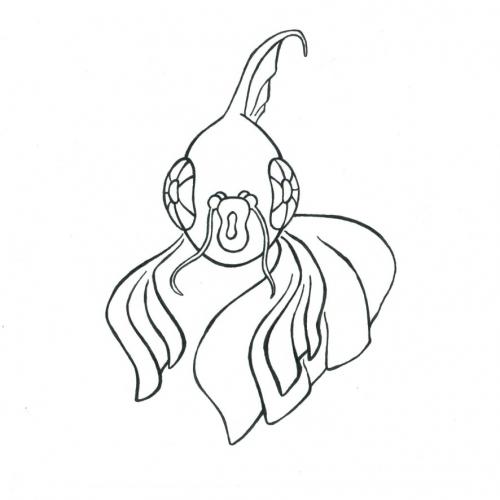 Rybka omalovánky - amfas