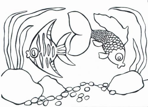 Rybky omalovánky