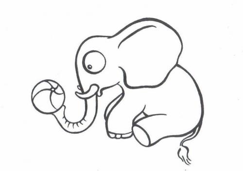 Slon omalovánky